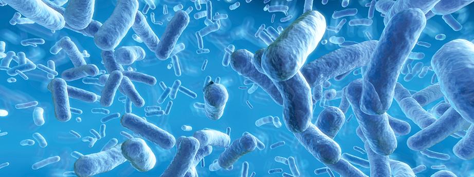 BC_antimicrobial-img